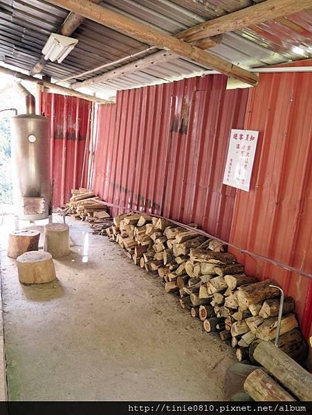 谷燕鱒魚露營11.JPG
