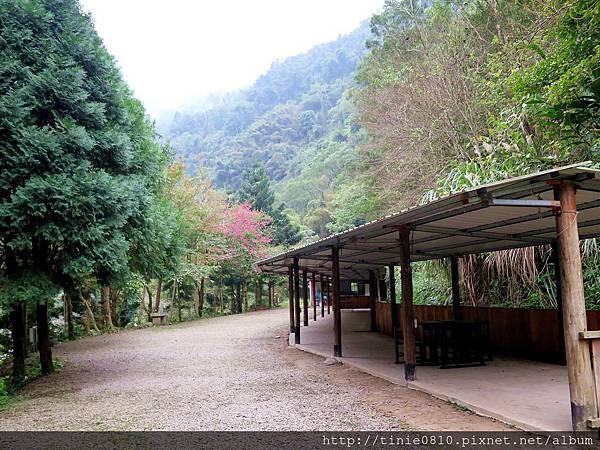 仙湖露營 3.JPG
