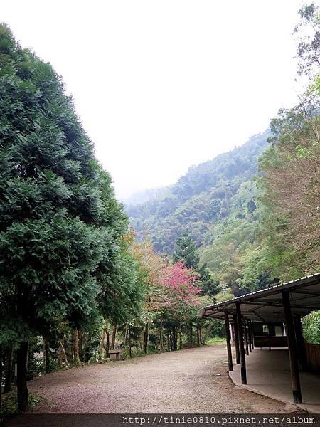 仙湖露營 4.JPG