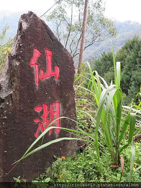 仙湖露營 41.JPG