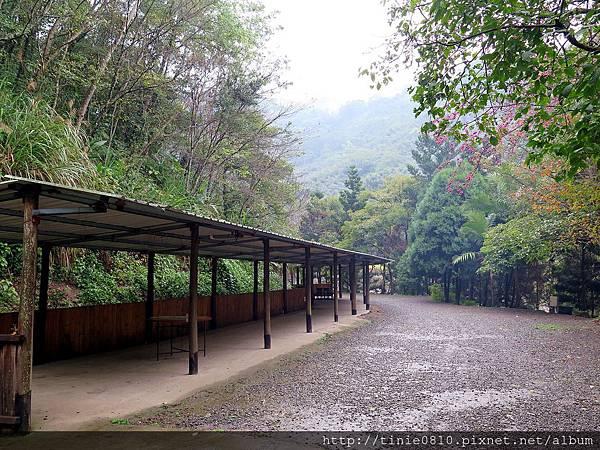 仙湖露營 43.JPG