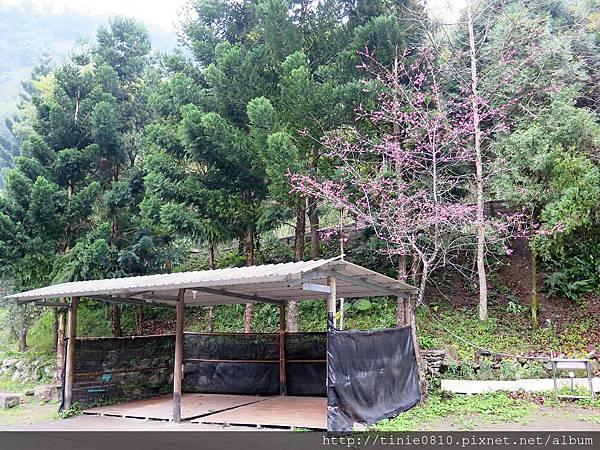 仙湖露營 48.JPG