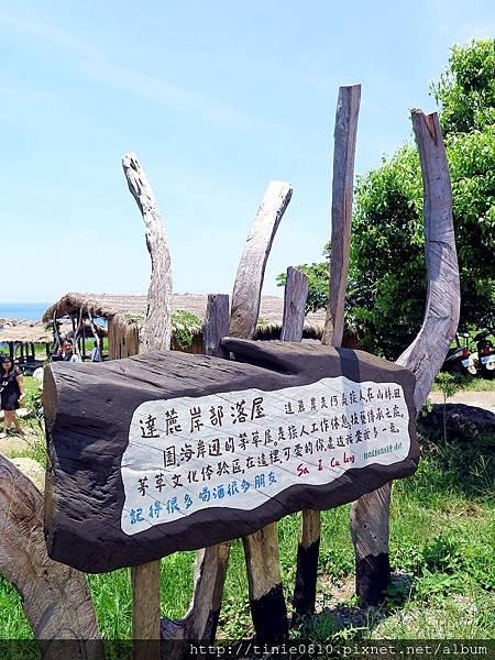 台東海洋游學13.JPG