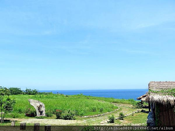 台東海洋游學22.JPG