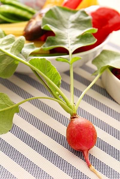 URBAN FARMER城市小農, 開心農場,櫻桃蘿蔔,油菜種子,蘿蔔食譜,香草花園