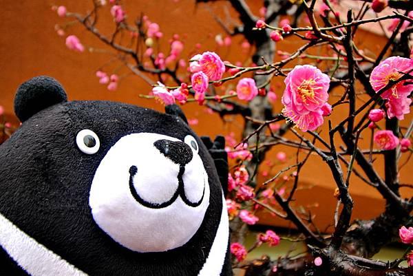 威熊、威航首航、福岡自由行、福岡必玩、福岡必吃