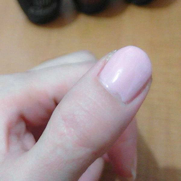 SAM_4931_副本.jpg