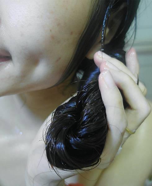 SAM_3898_副本.jpg