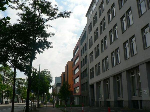 P1380885.jpg