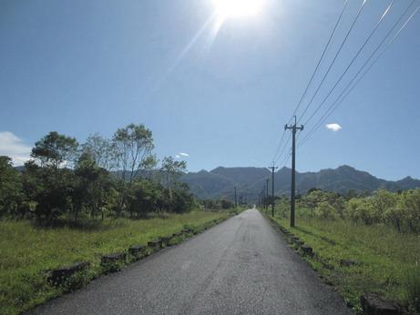 縣道193的路景