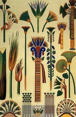 egypt lotus.jpg