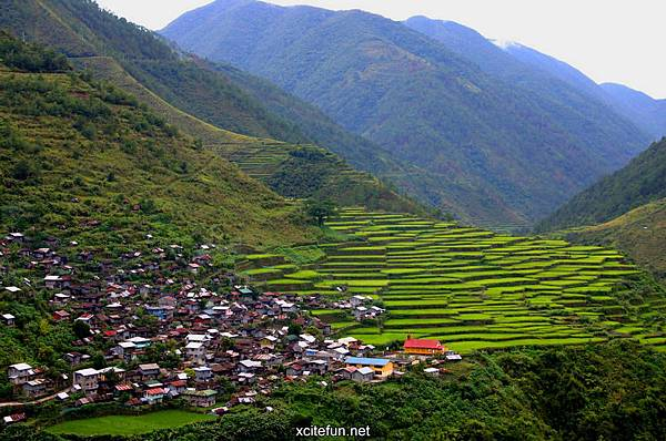 226094,xcitefun-banaue-rice-terraces-3