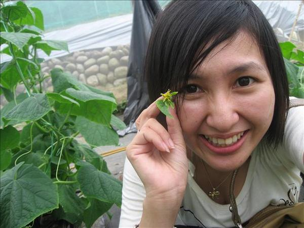 我和李老師一去那就想寄大條的送去上海給來順..