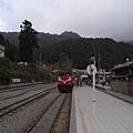 真的建議大家要來坐一次.感受一下火車爬山的景色..