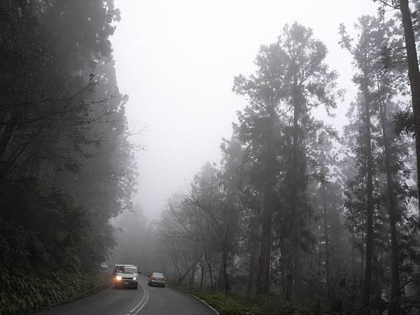 上山的路上開始起霧了..