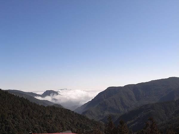 上山的風景真的很好呢.