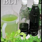 超濃縮微藻1.jpg