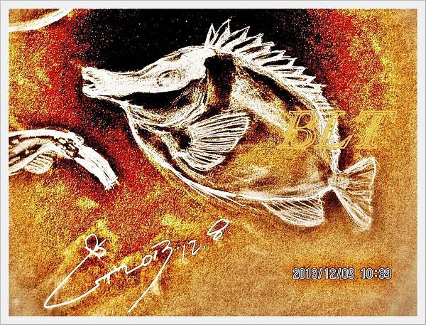 狐狸魚.JPG