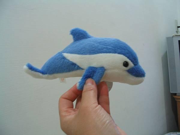 戰利品--小海豚