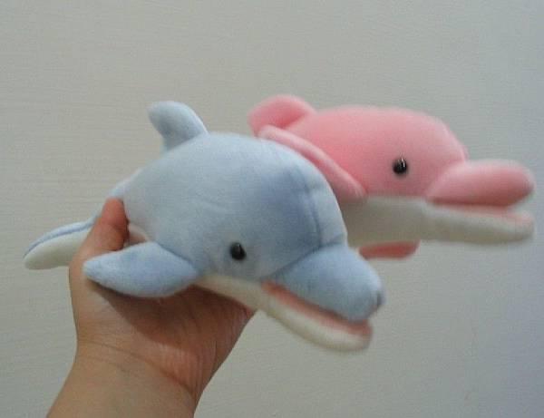 戰利品-海豚們