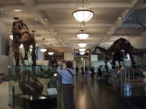 DAY 8-據說有關恐龍的東西很有名