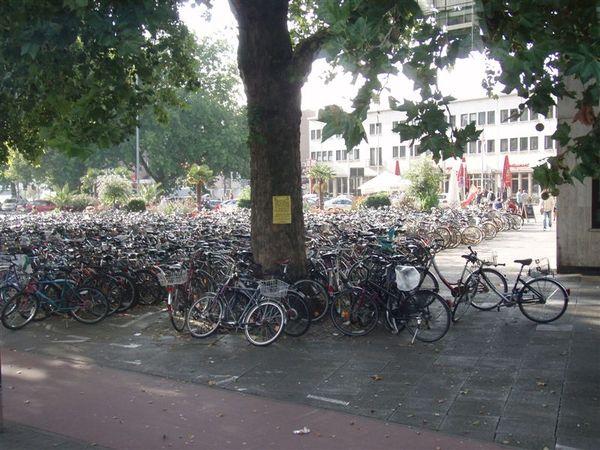 Day2-德國是個注重環保和運動的國家...在這邊腳踏車最大!!!