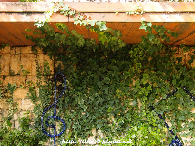香格里拉空中花園at清境