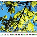 2013_05MAY_3.jpg