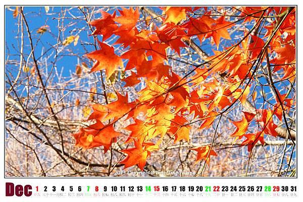 2013_12DEC_3.jpg