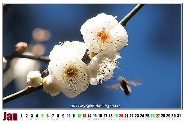 PC153601_3.jpg