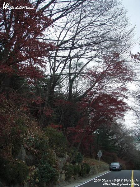 華克山莊之秋