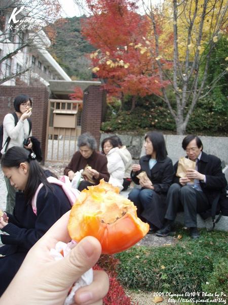 克難的一天~我的午餐是甜柿