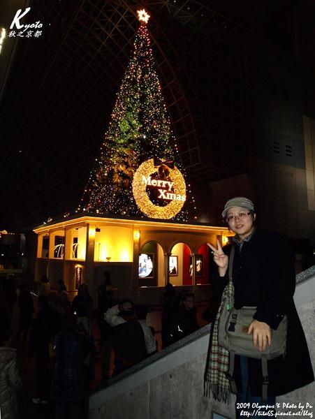 京都車站內的超大聖誕樹