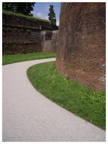 Lucca-0.jpg