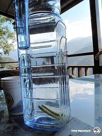 布洛灣--檸檬水