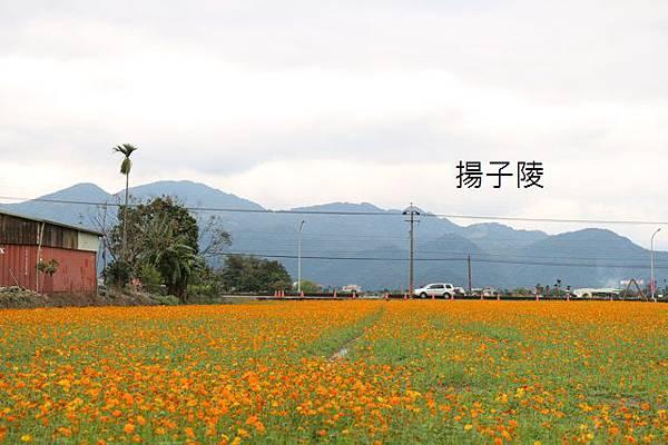 IMG_3191.JPG