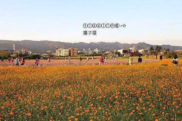 IMG_0065.JPG