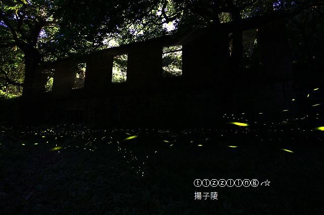 IMG_5898.JPG