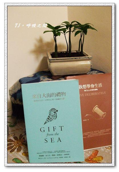 書籍~來自大海的禮物