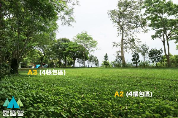 A3. A4.jpg