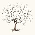 簽名樹 - B