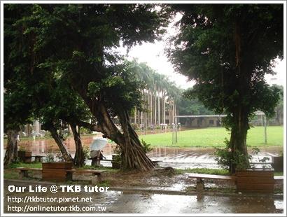 tutor-life-school-2.JPG