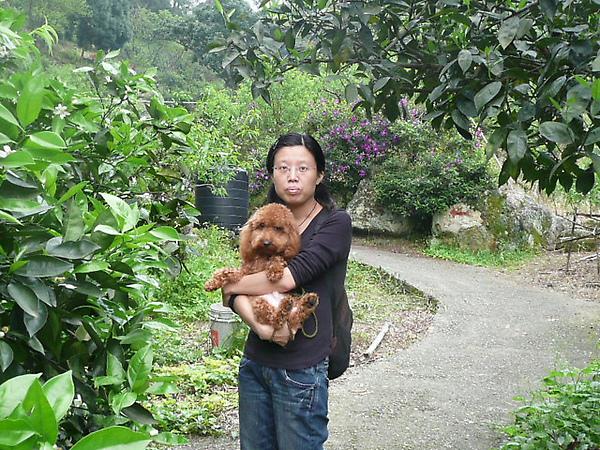 LINGO大溪果園遊記