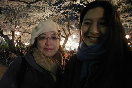 4/1鶴舞公園の夜桜