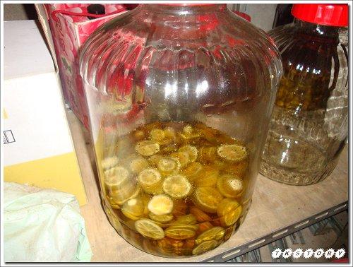 20090916-檸檬醋~1.jpg