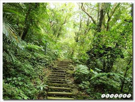 20100821-大板根森林溫泉渡假村~10.jpg