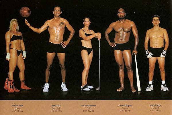 howard-schatz-and-beverly-ornstein-olympic-athlete-body-types-boxing-golf-baseball