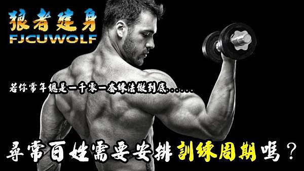 single-arm-dumbbell-curl-symmetrical-more-muscle1.jpg