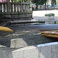 明治神宮淨水區