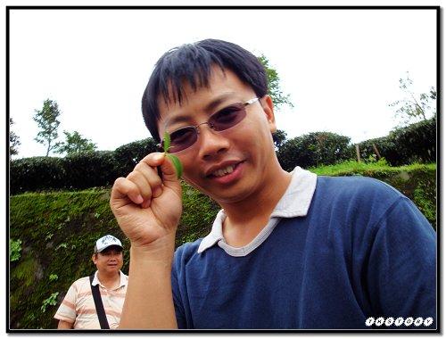 20090725-小半天茶園~28.jpg
